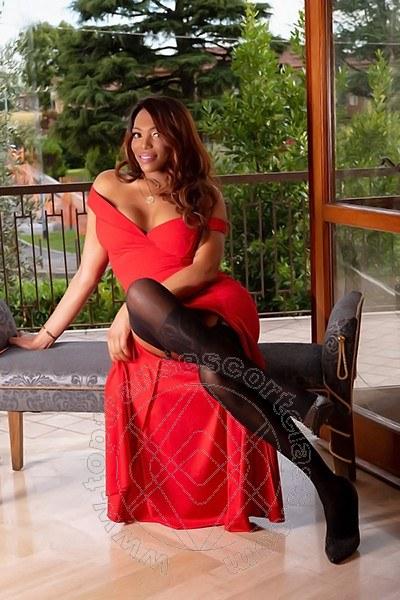 Naomi Trans  BERGAMO 3477133567